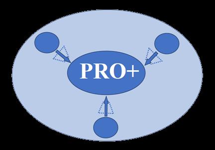 logo PRO+